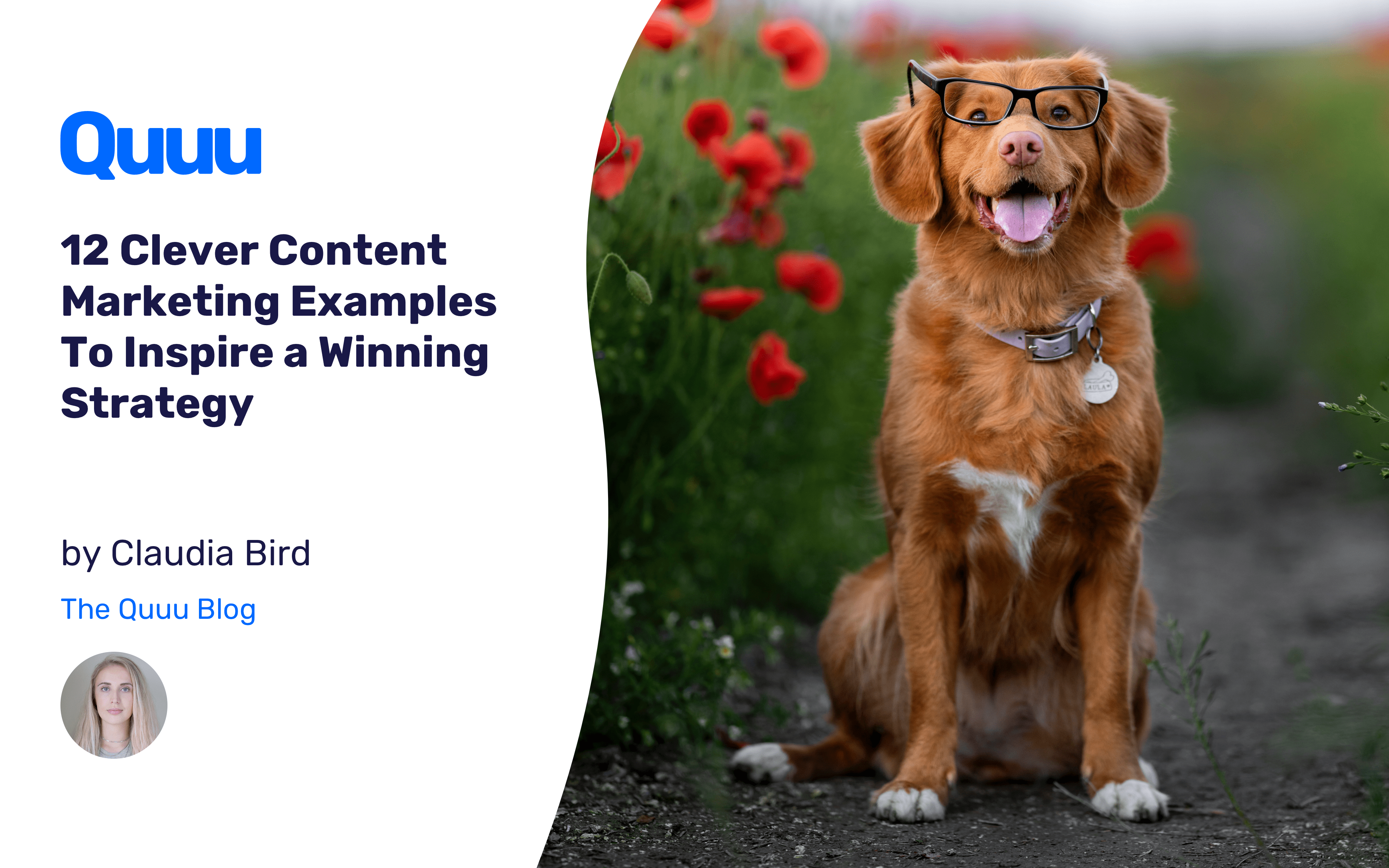 12 Clever Content Marketing Examples To Inspire a Winning Strategy